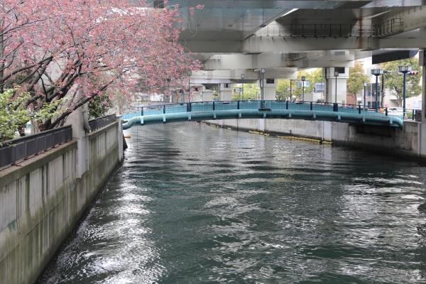 元町 横浜 美容室 美容院 オーガニック 白髪